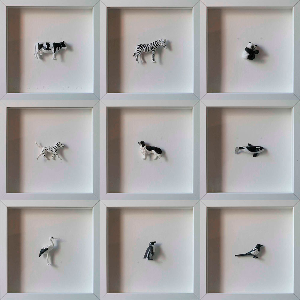 Collection Colors&Animals I. Black and white animals by Josep Maria Compte