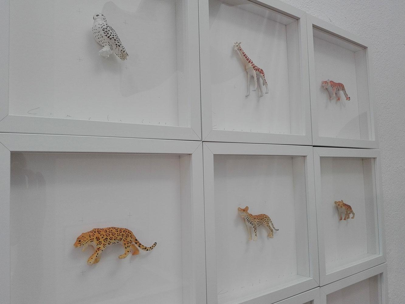 Detall d'una de les col·leccions de Josep Maria Compte Colors & Animals