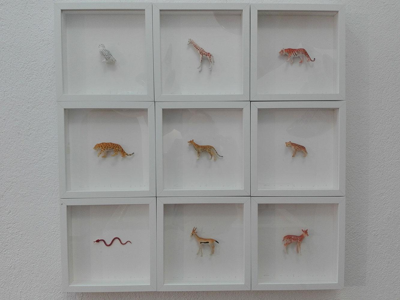 Colors & Animals. 3a col·lecció: Animals amb taques
