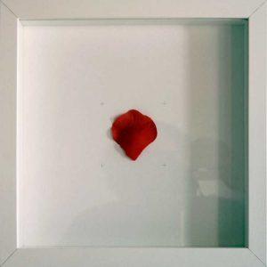 Artpiece: Desires - Rose petal
