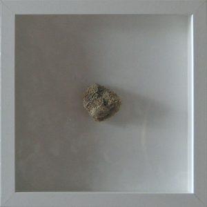 Artpiece: Remains of the sea - Fibres