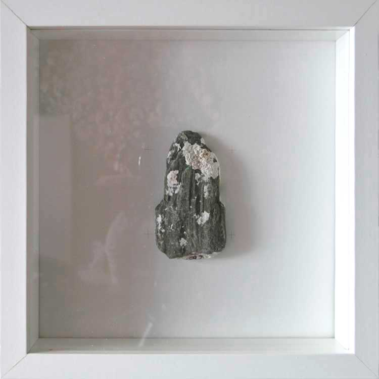 Artpiece: Shapes and Textures 1 - Slate stone with white coral 2