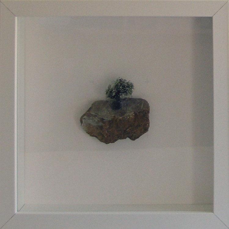 Artpiece: Universos I - landscape with olive tree